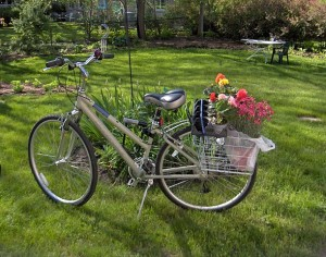 """Bike with Flowers"" by I'm nonpartisan - Own work. Licensed under CC BY-SA 3.0 via Wikimedia Commons - http://commons.wikimedia.org/wiki/File:Bike_with_Flowers.jpg#/media/File:Bike_with_Flowers.jpg"
