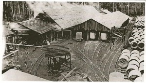 The flowline pipe manufacturing plant at Cooper's Cove near Sooke, 1914. Photo from the Wikipedia page, referenced in Resources below.