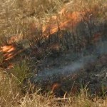 Staged fire in Sooke, to show how quickly a live butt causes a fire