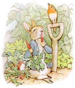 """PeterRabbit8"" by Beatrix Potter - Wikisource ebook of The Tale of Peter Rabbit. Licensed under Public Domain via Commons - https://commons.wikimedia.org/wiki/File:PeterRabbit8.jpg#/media/File:PeterRabbit8.jpg"