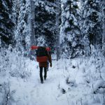 http://www.pixnio.com/free-images/people/male-men/man-with-backpacking-walking-in-forest-at-winter-725x477.jpg