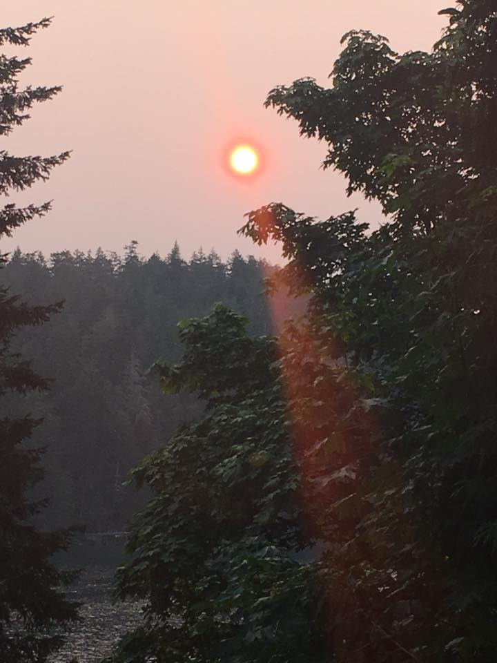 Morning sun over Roche Cove, from Rachel Dyer