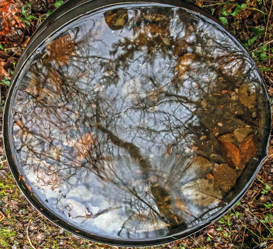 Barrel reflections, from Larry McCafferty