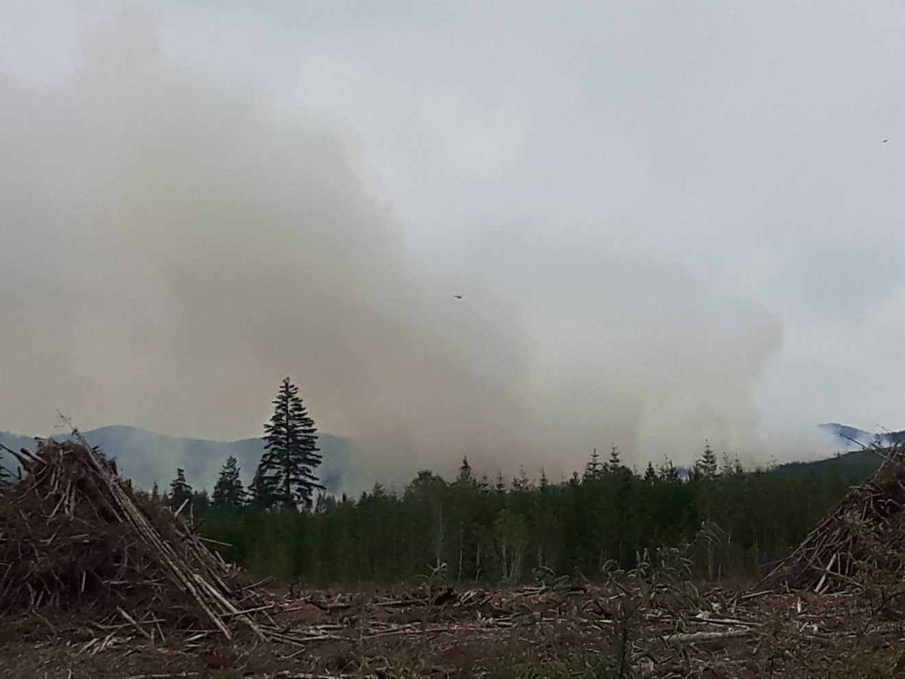 Tugwell Creek Fire from Blueberry Flats Tracy Snow July 4 2018