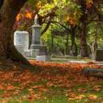 By Brandon Godfrey from Victoria B.C, Canada - Ross Bay Cemetery: Fall colorsUploaded by PDTillman, CC BY-SA 2.0, https://commons.wikimedia.org/w/index.php?curid=8831590