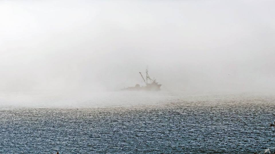 Fog fishing, Sheringham Point, from Larry McCafferty