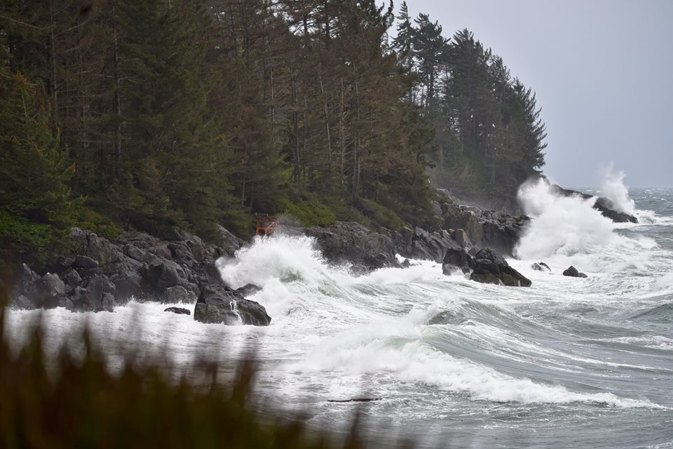 Rough coastline, from Joyce MacKinnon