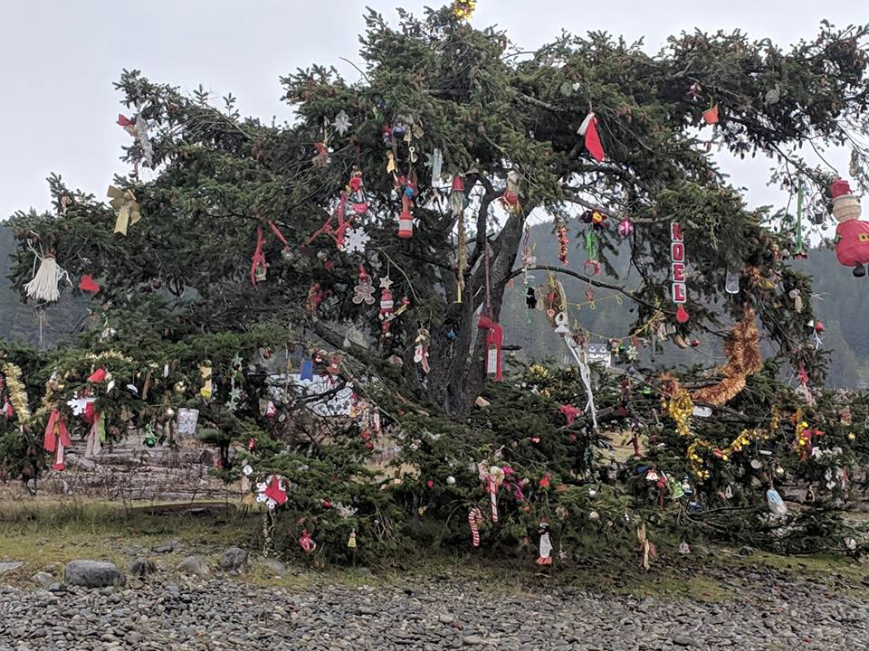 Sooke Christmas Tree, from Debbie Rock