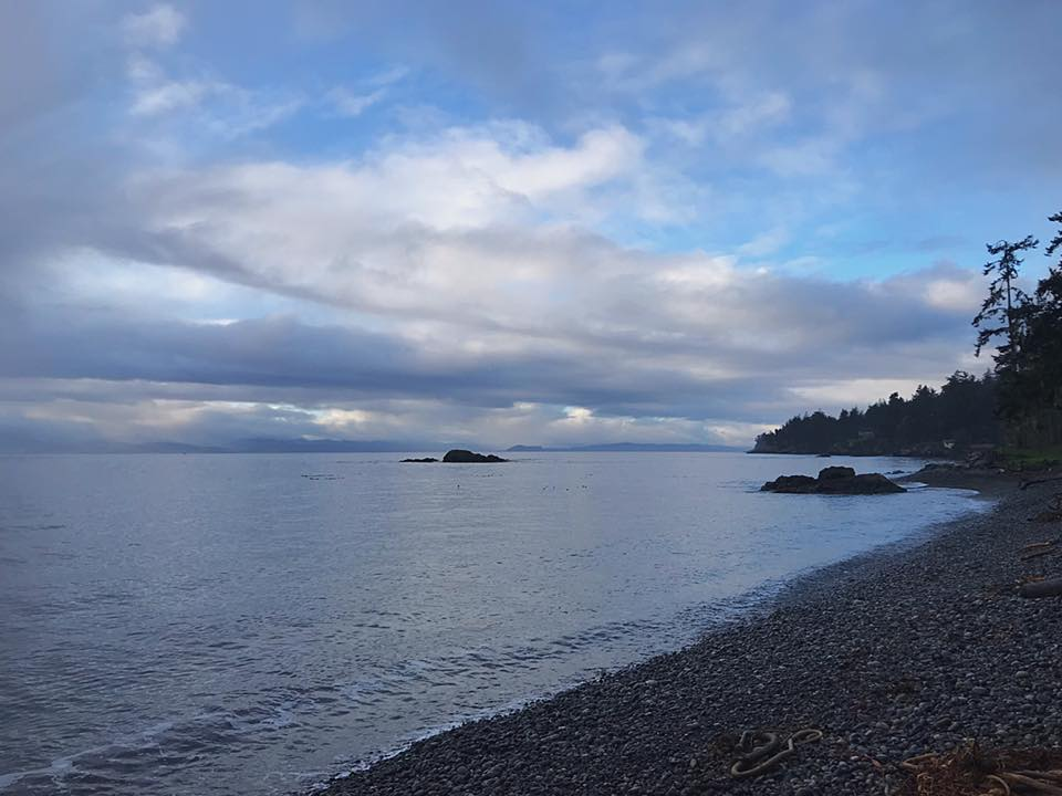 Sooke morning, from Lee-Ann Ruttan