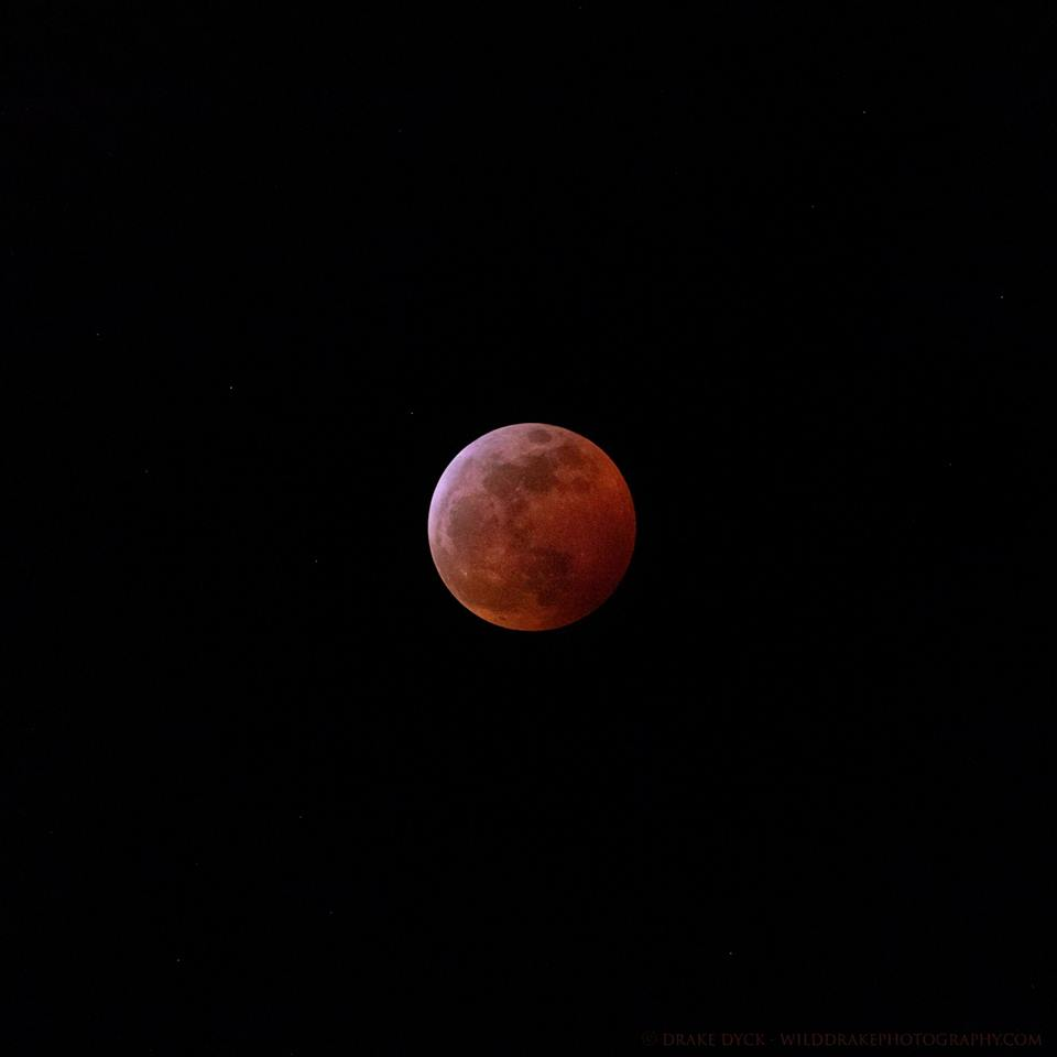 Blood moon, from Drake Dyck