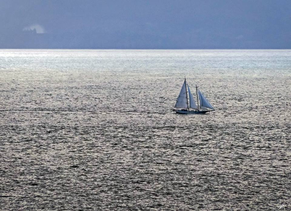 Sailing, from Larry McCafferty