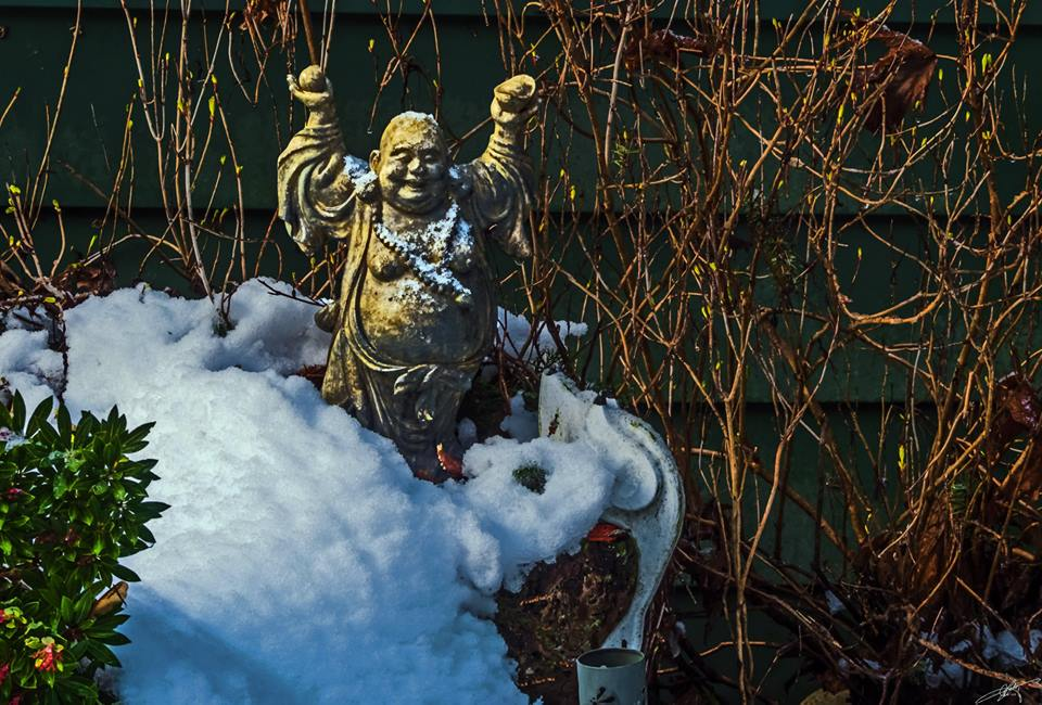 Buddha breaking free, from Larry McCafferty