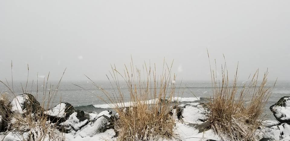 Ocean snow, from Jodi Pollner