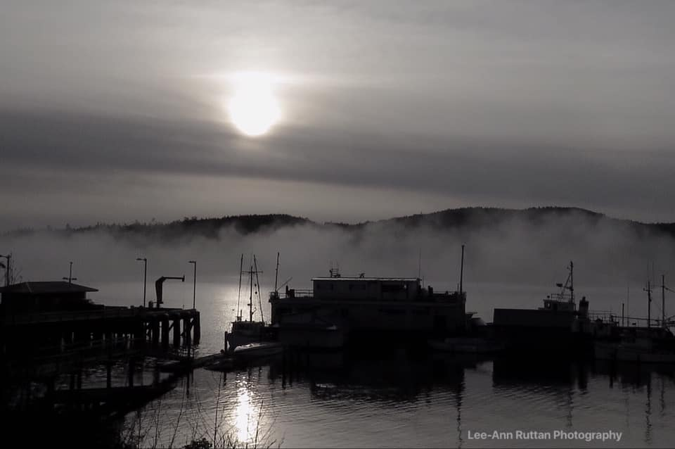 Drifting fog, from Lee-Ann Ruttan