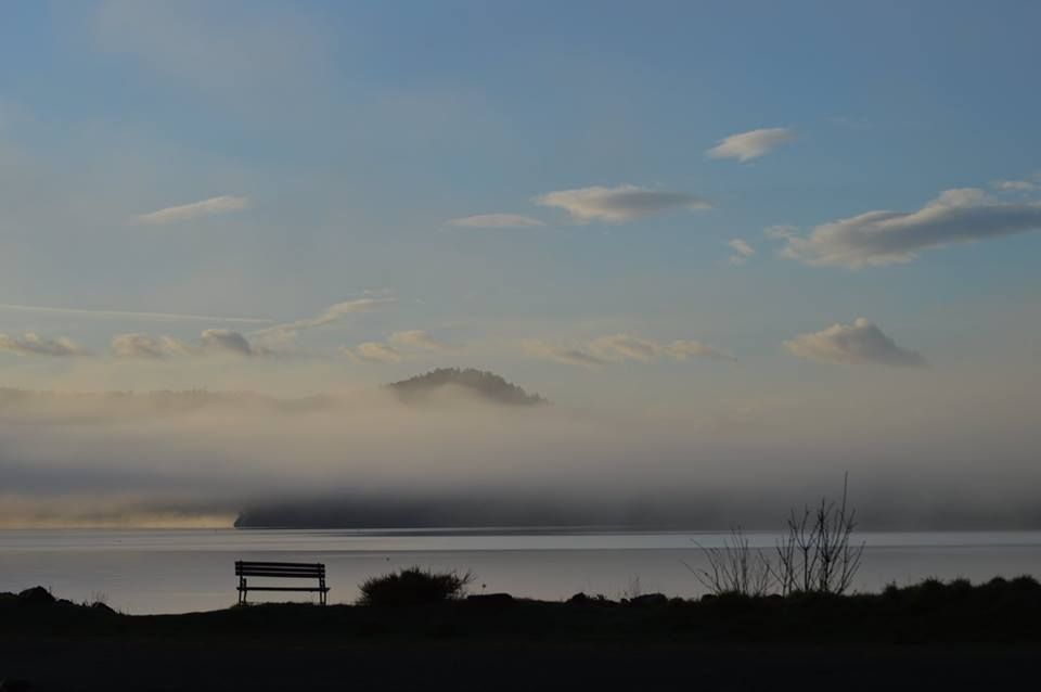 Fog bank, from Ken Groat