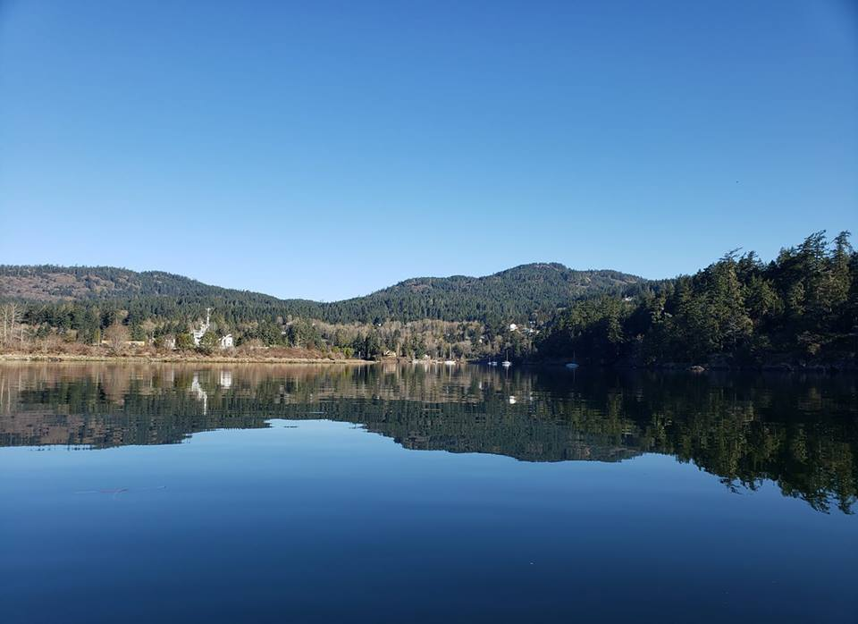 Sooke Basin, from Vanessa Boylan